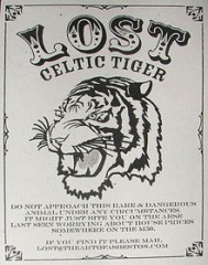 Lost celtic tiger.jpg